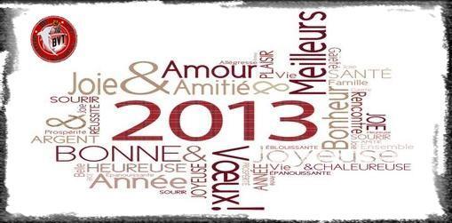 Le BVT vous souhaite une très bonne année 2013!!!
