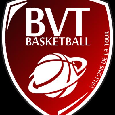 Logo BVT 2013